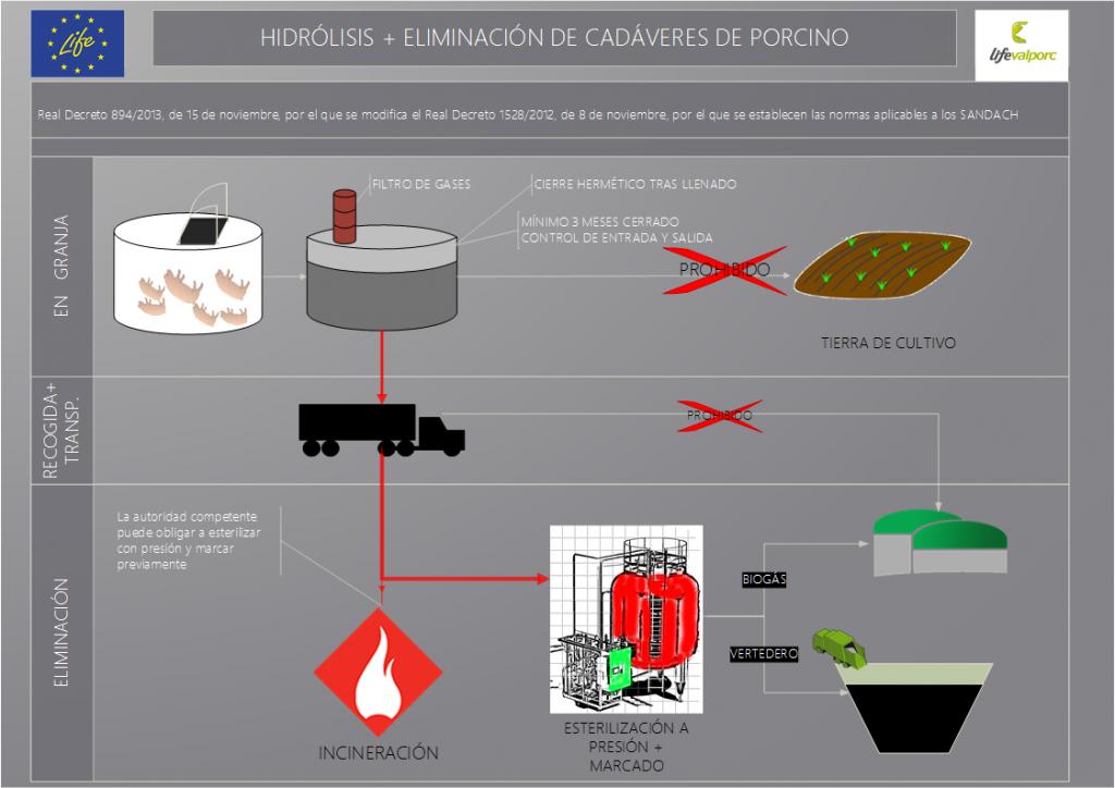 Línea de proceso: hidrólisis seguida de eliminación de cadáveres de porcino.